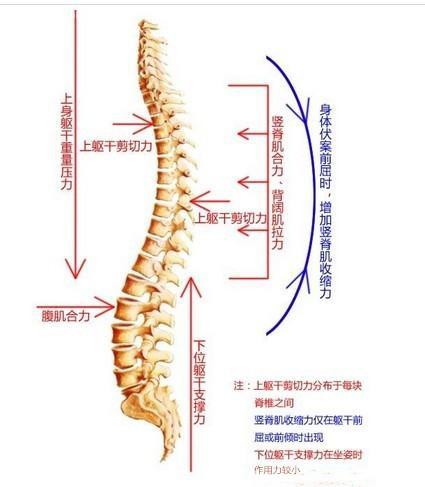 腰椎病的症状在生活中都有哪些表现呢?